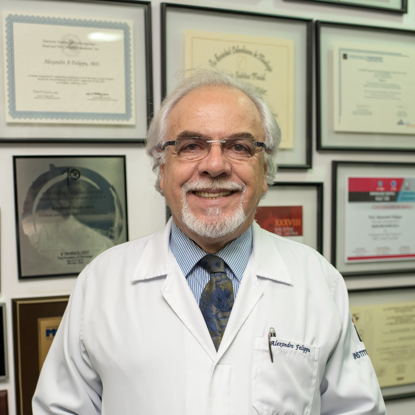 Prof. Dr. Alexandre Felippu Neto